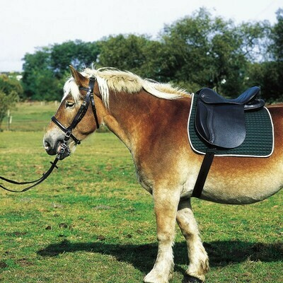 Selle cheval de trait by NORTON CLUB