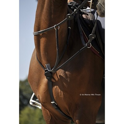 Martingale C-Cure by IHWT