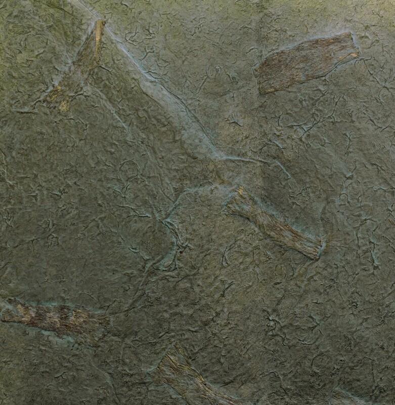 Carta texture 50x75 Pz.1