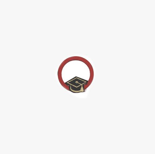 Applicazione Cerchio Rosso Laurea Pz. 12