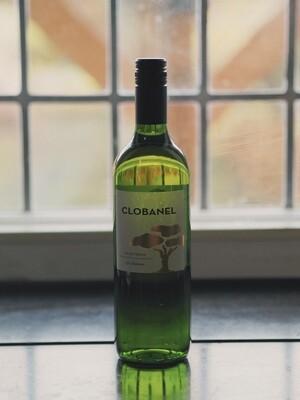 Fles Huiswijn Wit  - Globanel Sauvignon Blanc 75 cl