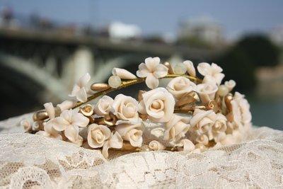 Tiara rosas de pitiminí