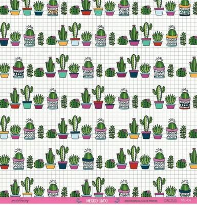 Vellum - Cactus