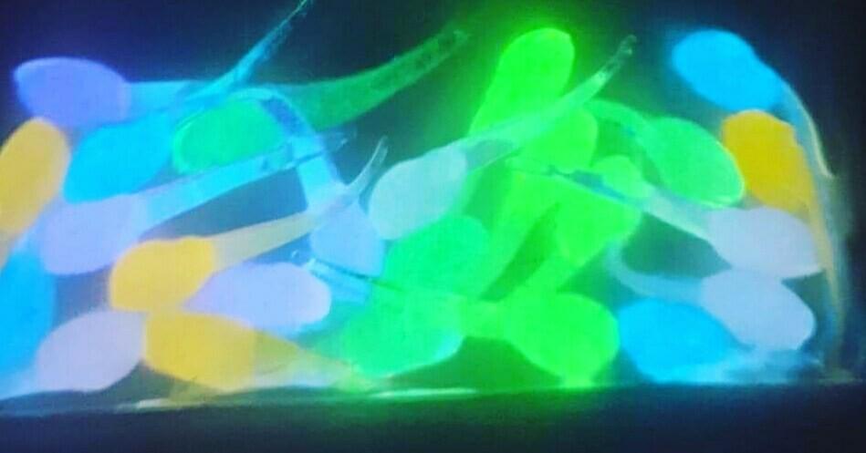 """1"""" Super Glo Nano fry glo 10 of ea color total of 60 baits"""