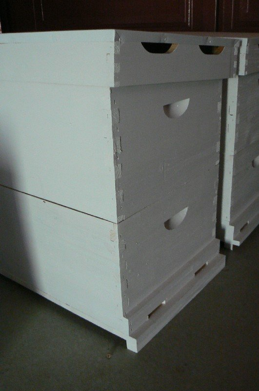 Economy Hive Assembled and Painted