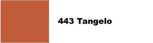 10 g Dharma Acid Dye - 443 Tangelo
