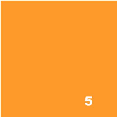10 g Fiber Reactive Dye - 5 SOFT ORANGE