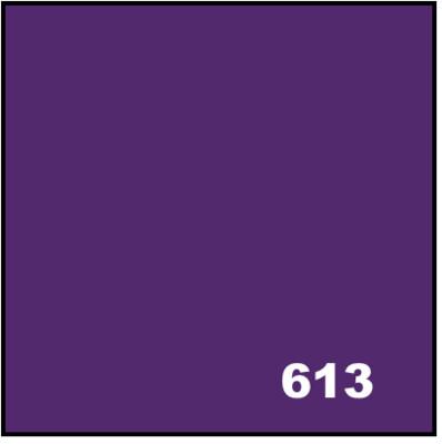 Acid Dyes - 613 Purple 20 g