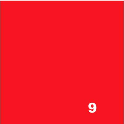 10 g Fiber Reactive Dye - 9 SCARLET*