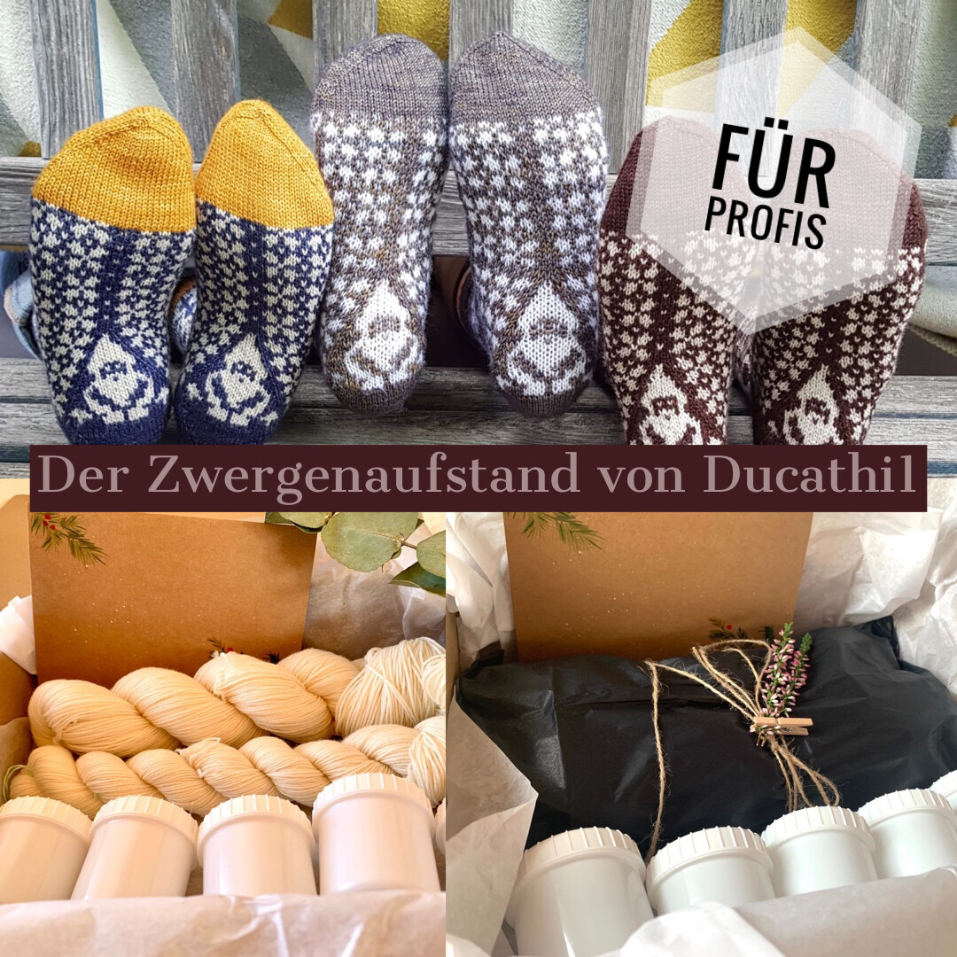 DUCATHI - Zwergenaufstand! - Sockenset - für Profisockenstricker :-)