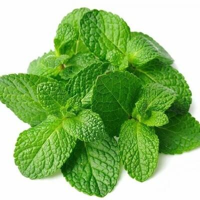 Fresh Mint Leaf Bunch, Each