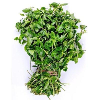 Fresh Mukunuwenna Leaves / මුකුණුවැන්න, 250g