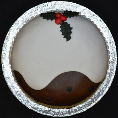 Christmas Pudding Novelty Cake