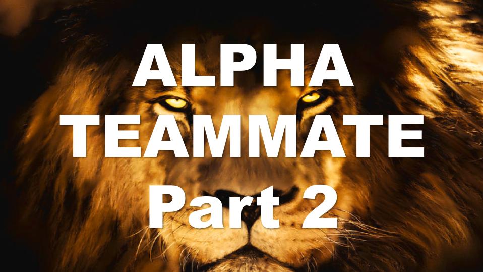 ALPHA TEAMMATE Part 2 - Leadership Lesson PP