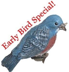 Early Bird Design Fee
