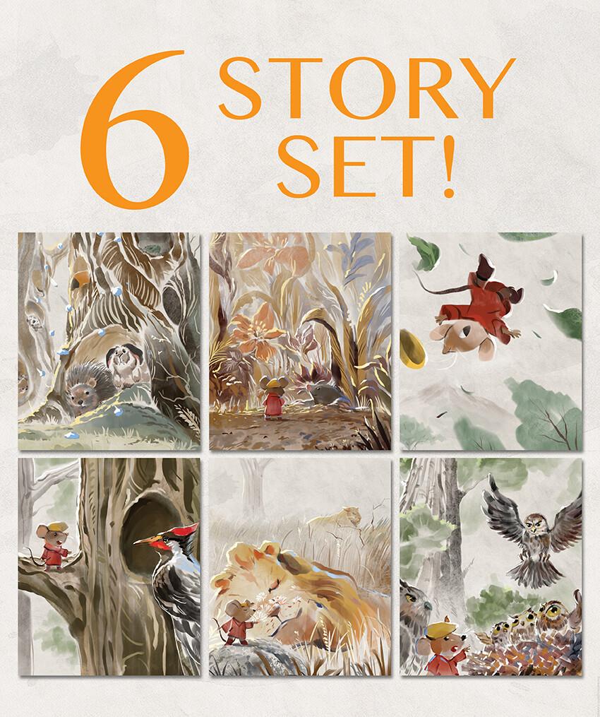 6 Story Set (13-18) SAVE 15%!