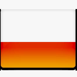 перевод документов польского языка