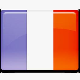 перевод документов французского языка