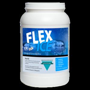 Bridgepoint Flex ICE (6lbs.)