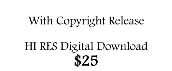 HI RES Digital Download with Copyright Release