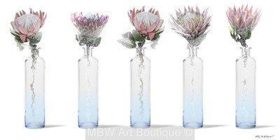Bottled Proteas