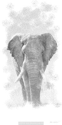 Sketch (Elephant)