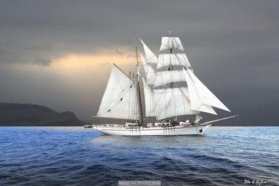 Wind Dancer Ocean