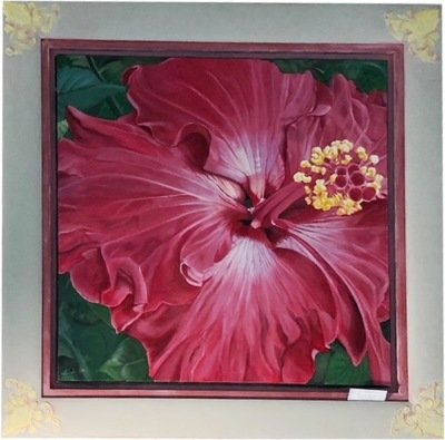 Red hibiscus by Kim