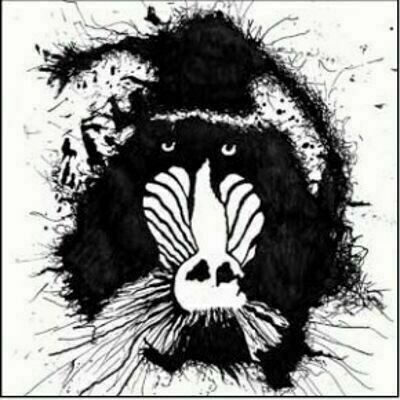 Feral Ohms - Feral Ohms [LP]
