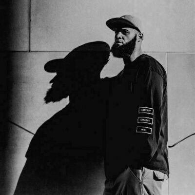 Homeboy Sandman - Veins [LP]