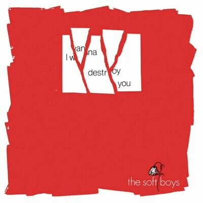 The Soft Boys - I Wanna Destroy You / Near The Soft Boys [2x7