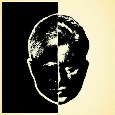 """Brother Theodore - Fate Conspires With Destiny To Do Me Dirt [LP+7""""]"""