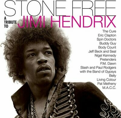 Various - Stone Free: Jimi Hendrix Tribute (Black & Clear) [2LP]