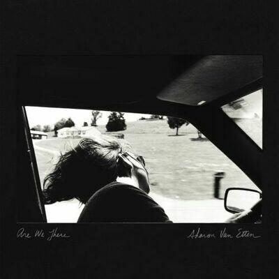 Sharon Van Etten - Are We There [LP]