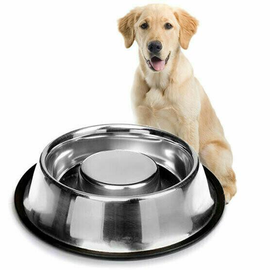 Plato Alimentacion Perro - Anti Ahogo 500 mL