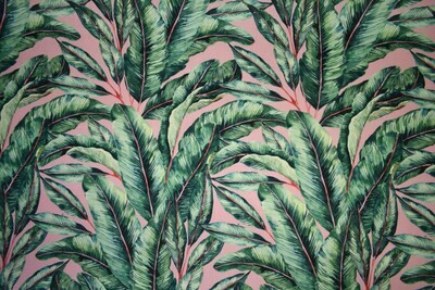 Frond-Blush  (Indoor-Outdoor) (Sunbrella)