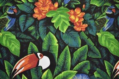 Toucan-Multi