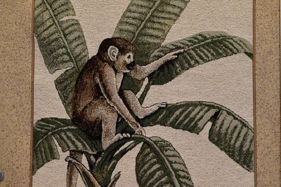 Pillow Island Monkey-Tropical (Sold By Frames/Not Yards)