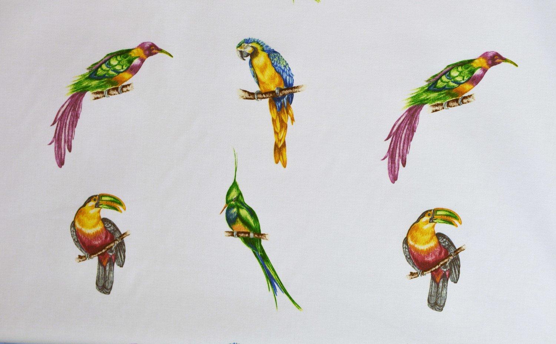 Parrots-84 Blue