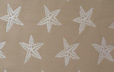Star Fish-Sand (Indoor-Outdoor)