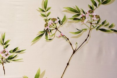 Blossum Hill-Ivory silk