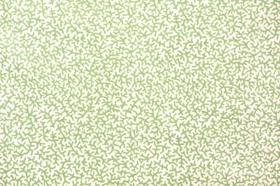 Jumbo Bull-Green