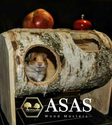 Hamster exercise hideout from birch log