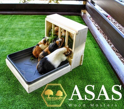 Guinea Pig Hay feeder With Litter Box