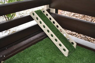 Ramp for rabbit castle