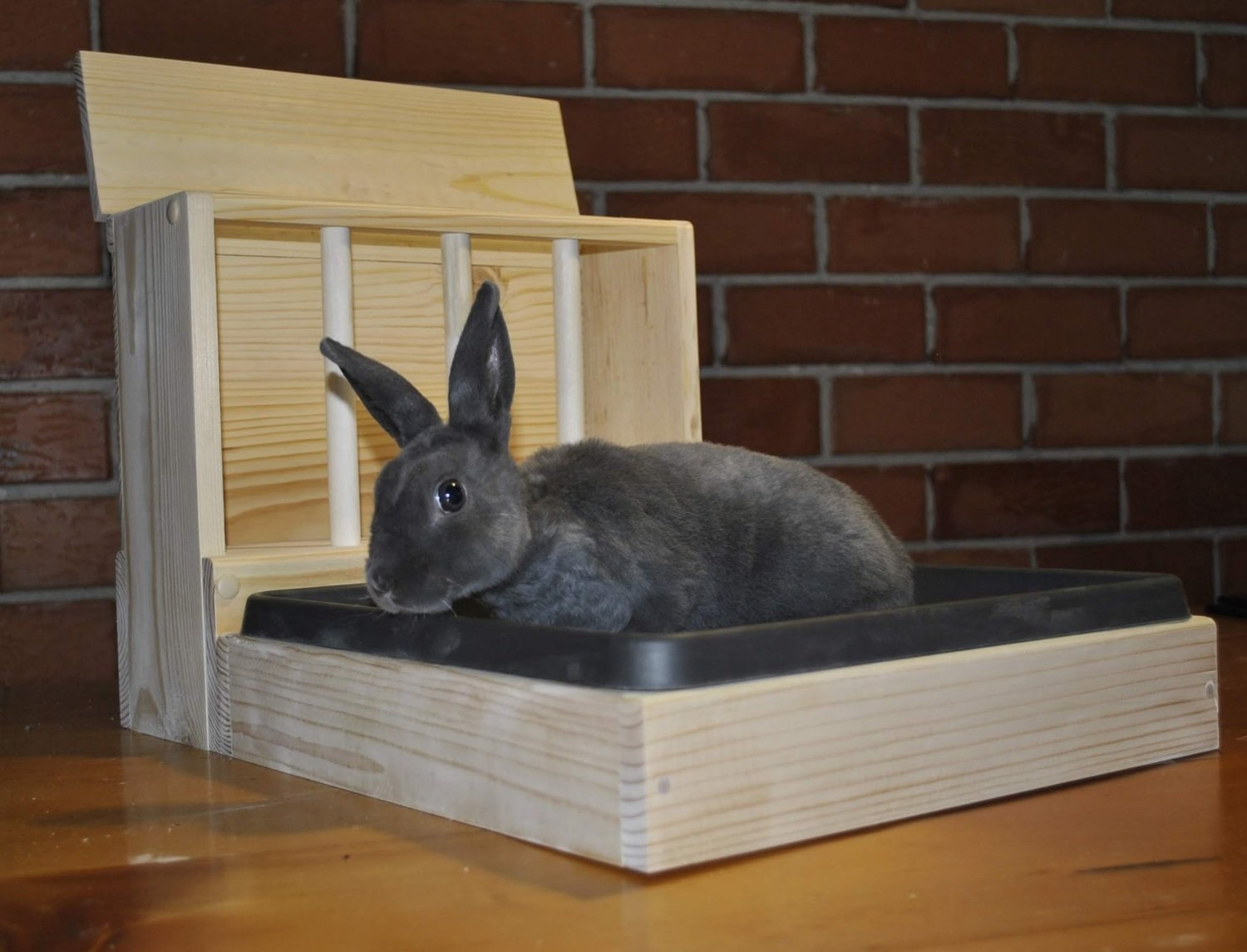 Rabbit Hay feeder With Litter Box / Easy entry litter tray