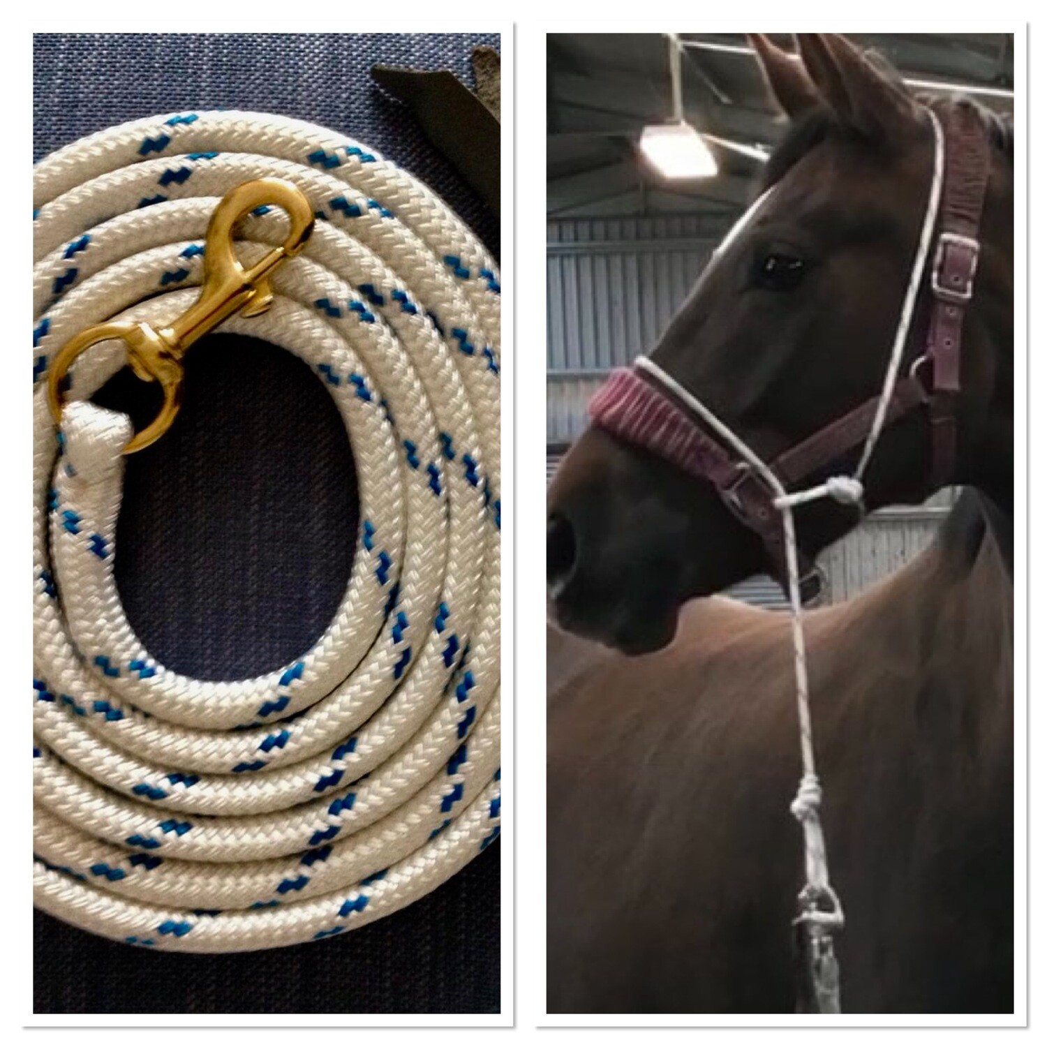 Combination of  Halter and 12 foot rope - FREE POSTAGE within the uk. Contact us for international shipping charges.