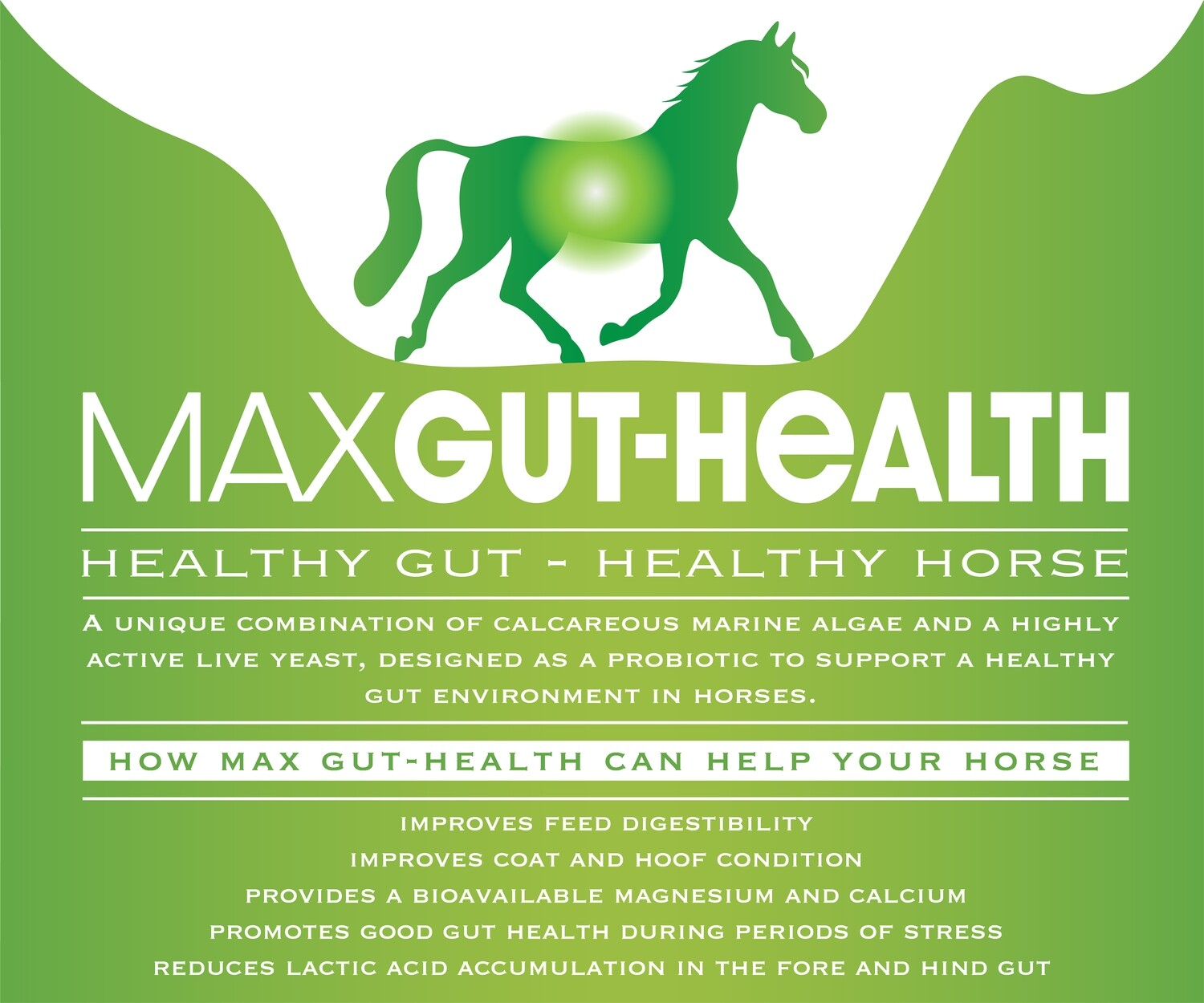 Max-Gut Health 4Kg (80 days per horse) £99 including Postage and packing (shipped by DHL - a tracking code will be emailed to you)