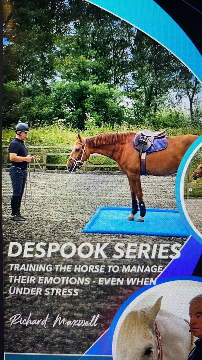 De-spooking, A series of videos showing how I would go about despooking a horse (£50 on vimeo)