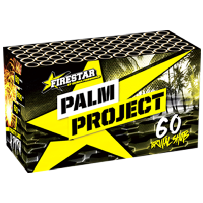 1434 Palm Project